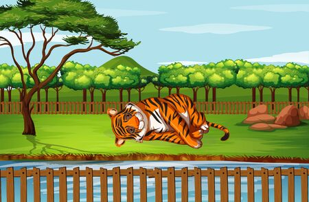Scene with tiger at the zoo illustration