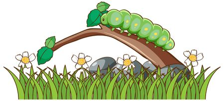 Isolated picture of fat caterpilla on branch illustration