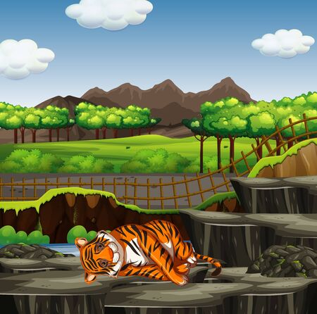 Zoo scene with one tiger illustration