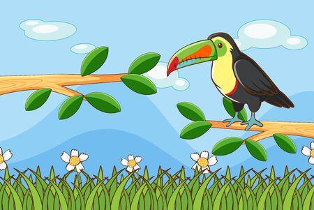 Scene with toucan bird on branch illustration Vecteurs