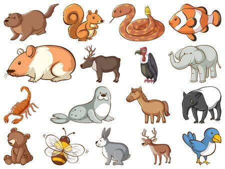 Large set of wildlife with many types of animals illustration