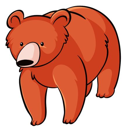 Grizzly bear on white background illustration