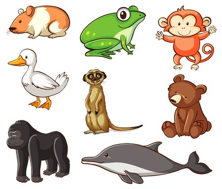 Large set of wildlife with many types of land and water animals illustration