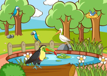 Scene with many birds in the park illustration