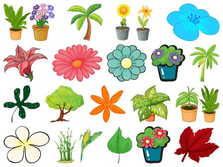 Large set of different gardening objects on white background illustration