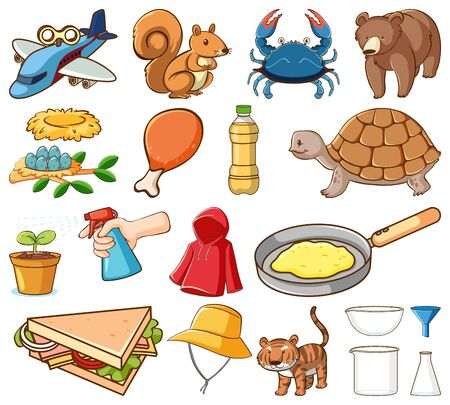 Large set of different animals and other objects on white background illustration