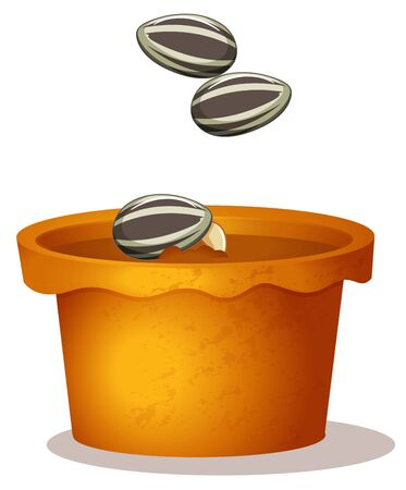 Three sunflower seeds in the potted plant on white background illustration