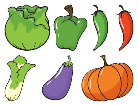 Large set of fruits and vegetables on white background illustration