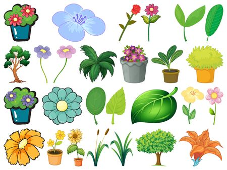 Large set of different plants on white background illustration