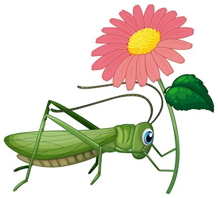 Grasshopper holding pink flower illustration