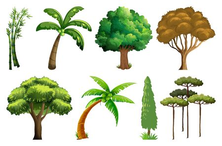 Set of variety plants and trees illustration