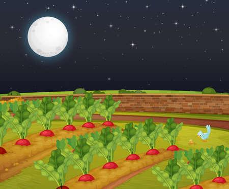 Carrot farm scene with big moon at night illustration