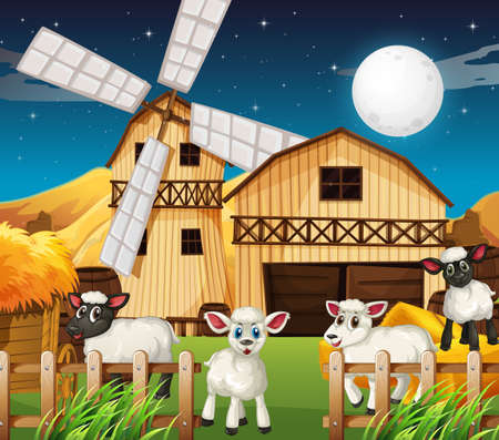 Farm scene with barn and cute sheep at night illustration Ilustrace