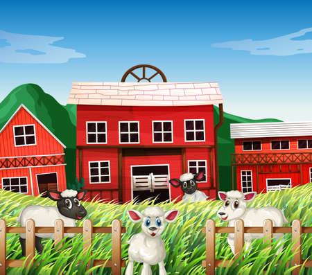 Farm scene in nature with barns and sheeps illustration Stock Illustratie