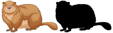 Set of groundhog characters and its silhouette on white background illustration Stock Illustratie