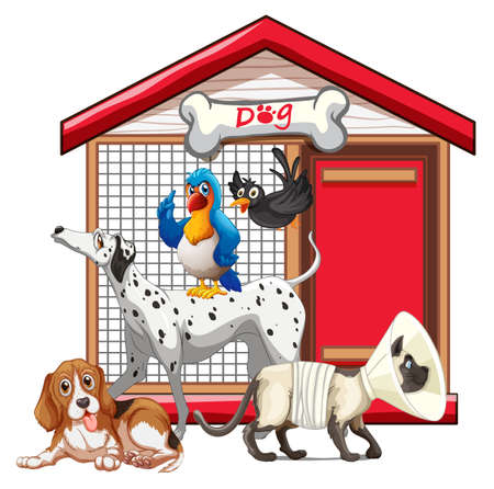 Set of pet with its house illustration Stock fotó