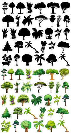 Set of plant and tree with its silhouette illustration Stock fotó