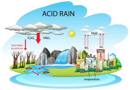 Diagram showing acid rain pathway on white background illustration