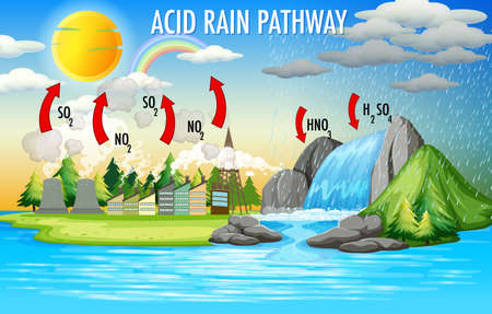 Diagram showing acid rain pathway illustration 矢量图像