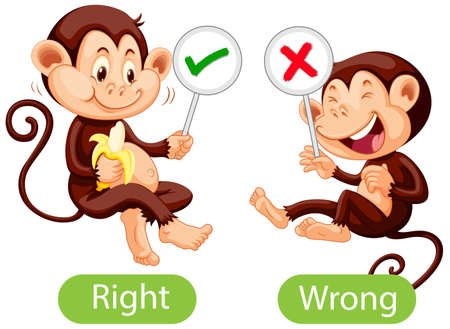 Opposite words with right and wrong illustration Vetores