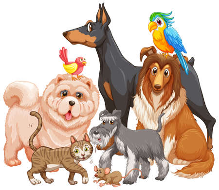 Group of pet on white background illustration