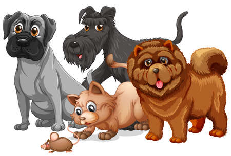 Dog and cat in a group cartoon character illustration