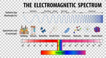 Science Electromagnetic Spectrum diagram on transparent background illustration