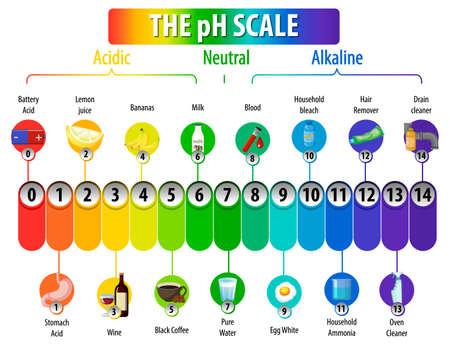 A pH scale on white background illustration Ilustración de vector