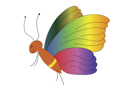 illustration of a butterfly with wings in many colors
