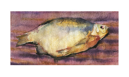 Watercolor sketch of dried fish on a striped background