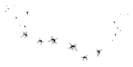 A flock of flying mosquitoes. Silhouette.