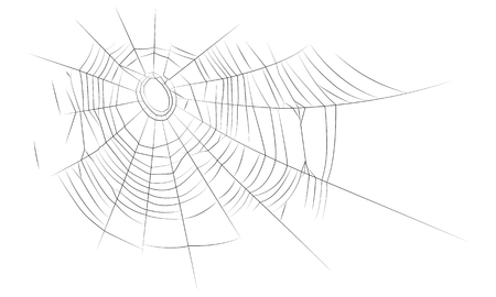 The old web, graphics, linear drawing. Vector image, isolated on white background.