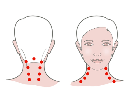 Head with a neck of a young woman with dots for self-massage. Front and back view. Linear graphic, isolated on white background Stock Photo
