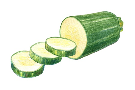 Zucchini whole and in a cut. Drawing with colored pencils, isolated on white background