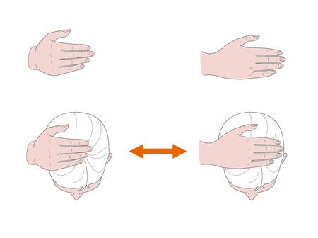 Bovenaanzicht van het vrouwelijk hoofd van bovenaf. Een vrouw voert zelfmassage van haar hoofd uit met haar hand. Vector. Geïsoleerd op witte achtergrond