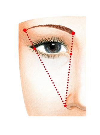 Fragment d'un visage de femme avec les yeux ouverts. Le schéma de construction de la longueur idéale du sourcil. Banque d'images - 94803971