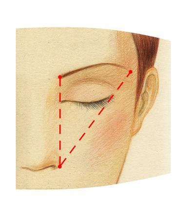 Fragment d'un visage de femme avec des yeux fermés. Le schéma de construction de la longueur idéale du sourcil. Banque d'images - 94744687
