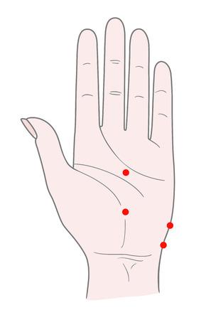 Die Innenseite der linken Hand der Frau mit Punkten für die Akupunktmassage. Vektor. Isoliert auf weißem hintergrund Standard-Bild - 95291378