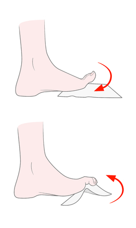 Exercise for flexibility of the joints of the toes. A bare foot of a woman bends and unbends her fingers. Lifting your handkerchief and small objects with your toes. Vector. Isolated on white background.