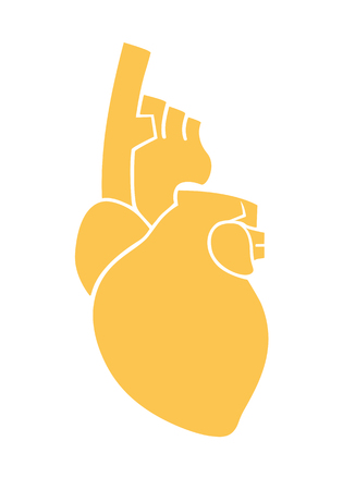Anatomical Human Heart Sign. Flat design. Vector. Isolated on white background Ilustração