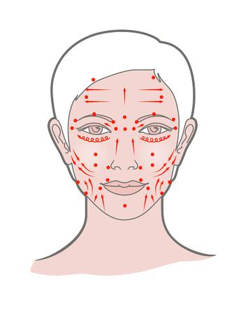 Punktowy masaż twarzy shiatsu, akupunktura. Widok głowy kobiety. Wektor. Pojedynczo na białym tle