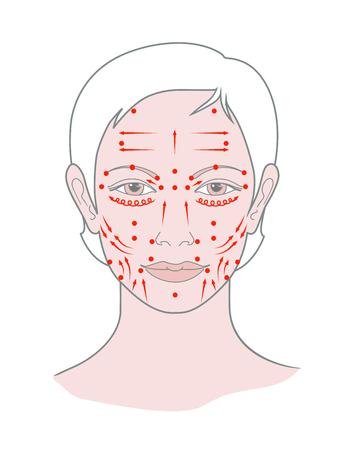 Massage du visage aux points Shiatsu, acupuncture. Vue de la tête féminine. Vecteur. Isolé sur fond blanc Vecteurs