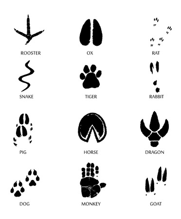 PrintChinese zodiac signs icons set.  Paw prints marks , footprints of rat, mouse, snake, dragon, pig, rooster, rabbit, horse, monkey, dog, tiger, ox, bull. Vector illustration