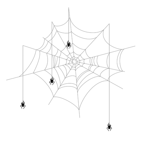 Old torn and crooked web with spider Banco de Imagens