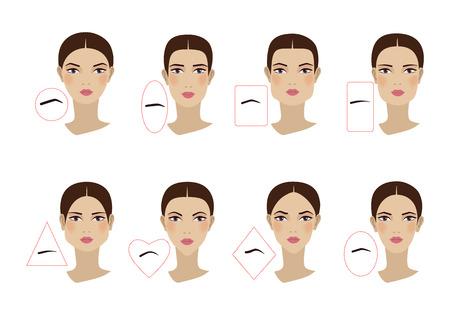 Les sourcils féminins épousent la forme du visage. Conception plate. Illustration vectorielle Vecteurs
