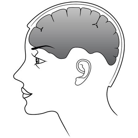 Line silhouette woman head with brain organ. Vector  illustation isolated on white background