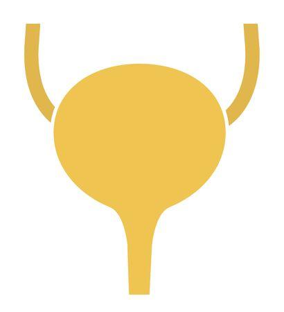 Human internal organs: ureters and bladder. Illustration.  Flat design Stock Photo