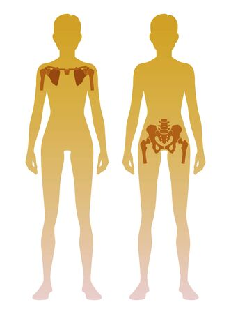 Woman silhouette with skeleton of the shoulder girdle and pelvic girdle location on body. Illustration