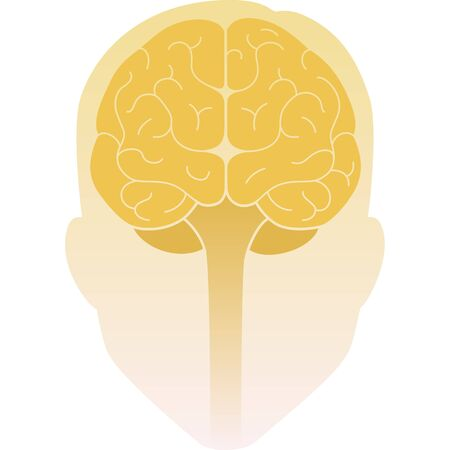 Human head front view and the brain inside. Human brain front view. Vector illustration. Flat design