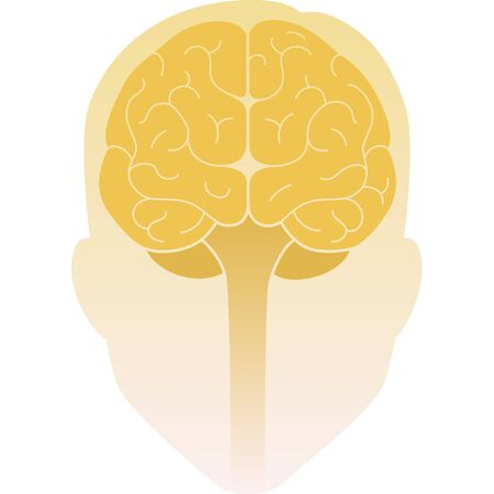 Human head front view and the brain inside. Human brain front view. Illustration. Flat design
